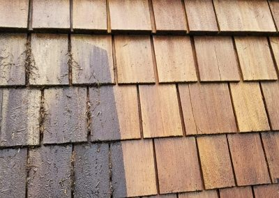Roof cleaning Burnaby, BC
