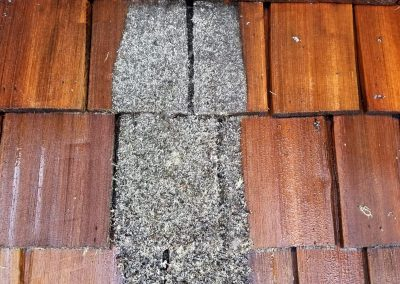 Roof Cleaning and Treatment, Whistler BC