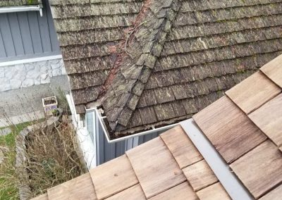 Client's Cleaned Roof vs. Neighbour's Roof - Morgan Creek, Surrey, BC
